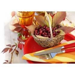 Красивая осенняя сервировка Вашего стола