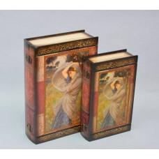 Книга - шкатулка из 2 шт. D0078  S