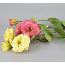 "Цветок ""Эустома""  SUB6803"